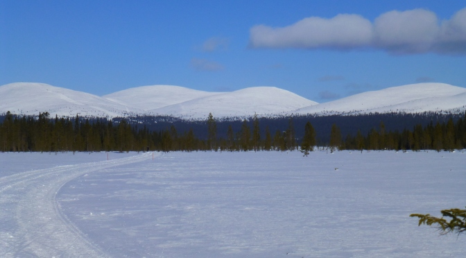 Levi-Äkäslompolo-Olos, paradis du ski de fond du 28 mars au 4 avril